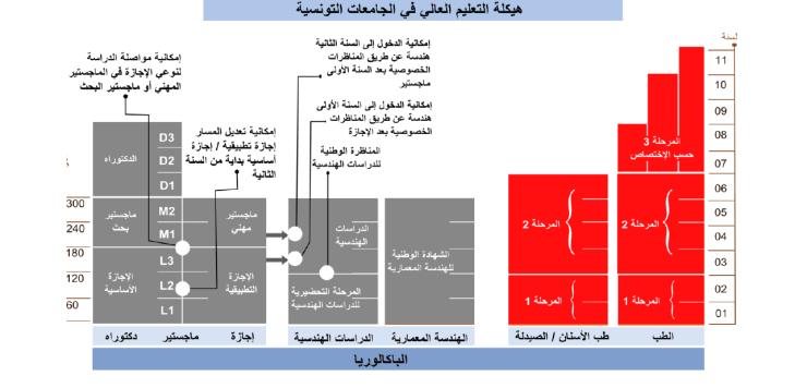 """Résultat de recherche d'images pour """"هيكلة التعليم العالي في الجامعات التونسية"""""""