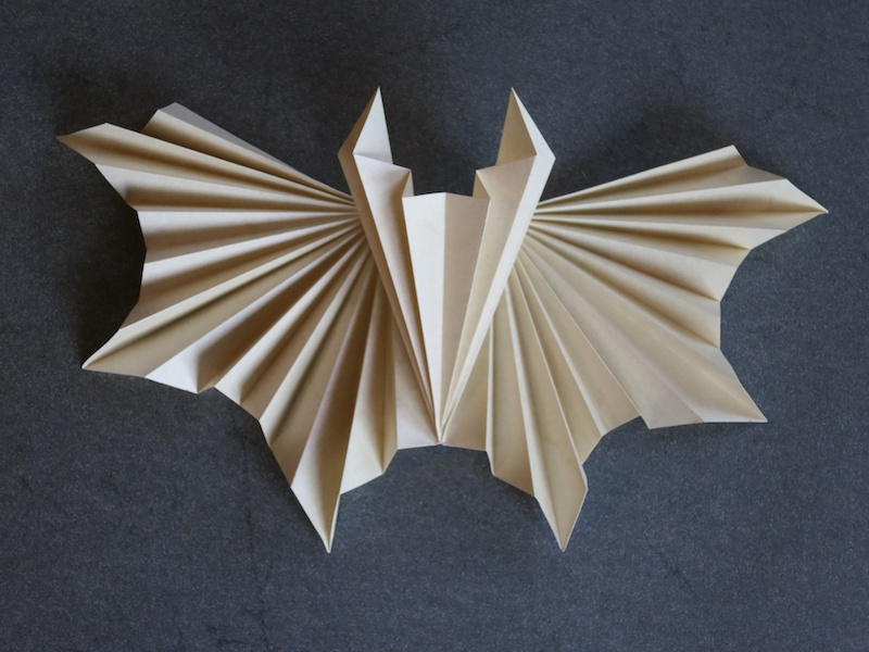 Vespertilio - corrugated paper bat