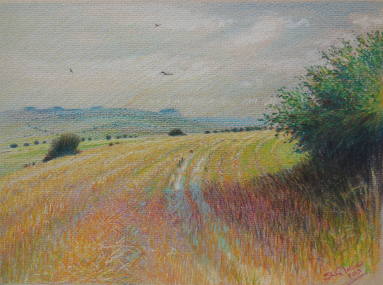 Affordable English Art For Sale Wiltshire Scenes