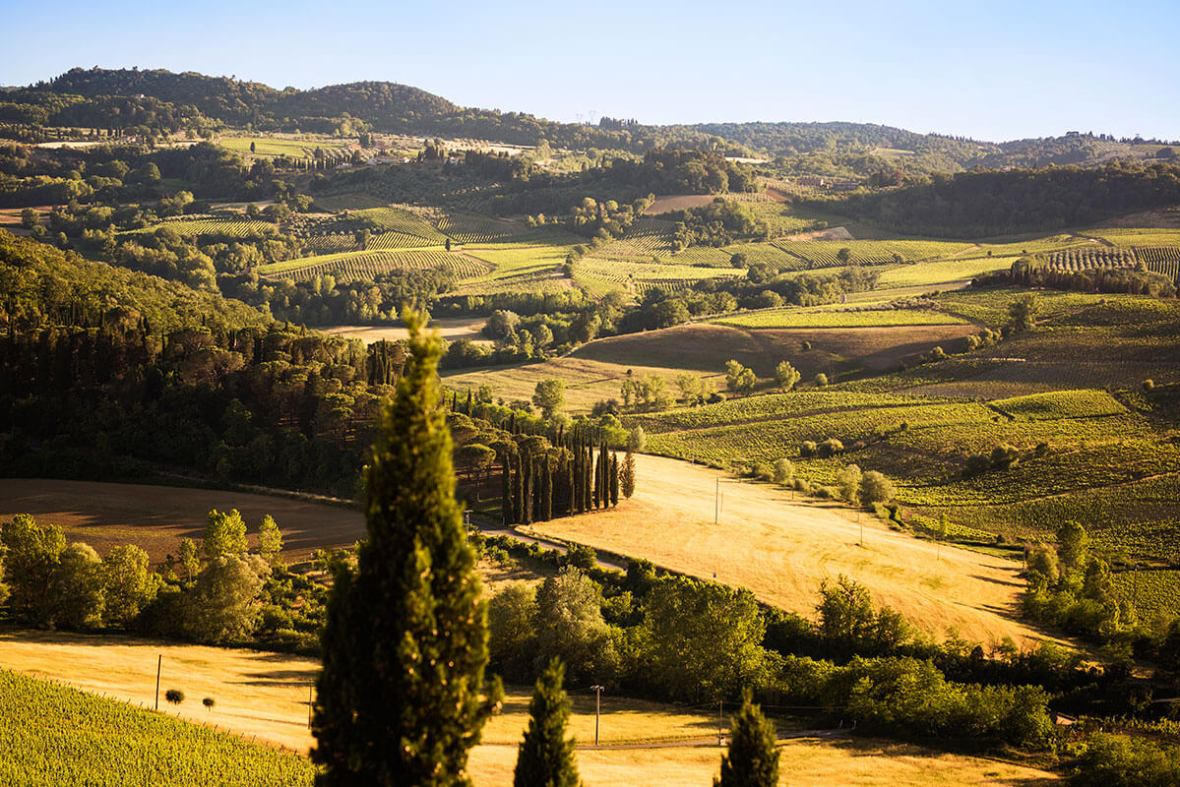 Wonderful panorama of Tuscan country