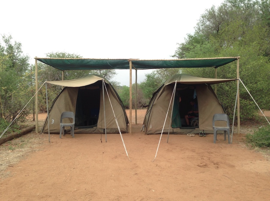 ngala-camp-tents