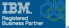 IBM Bus Partner logo