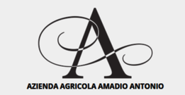Amadio Antonio Logo
