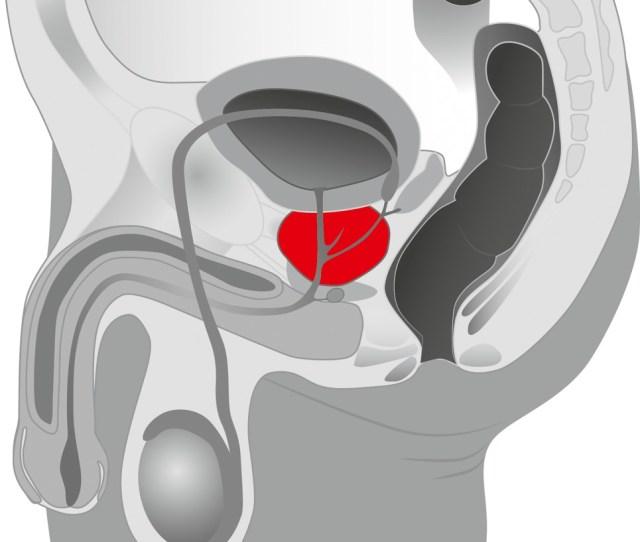 Pro Anal Anal Dildo With Perineum Stimulator