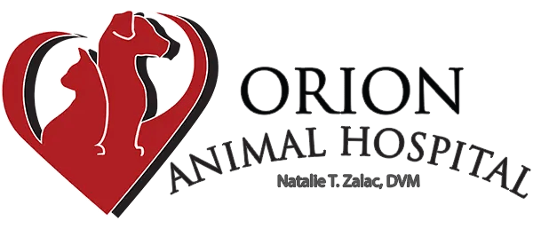 11Orion Animal Hospital