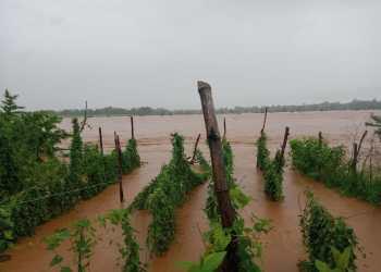 Floodwaters in Rayagada