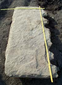 Brodgar Stone: Picture S Towrie
