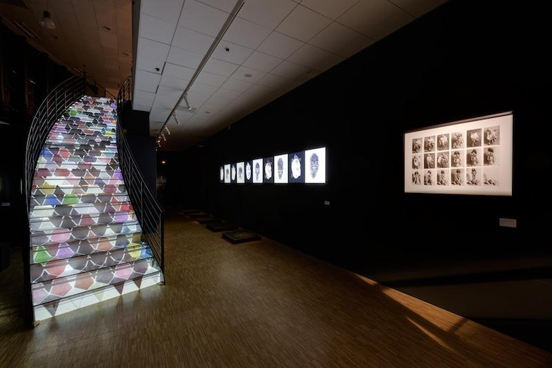 Exhibition view of ORLAN Striptease from cells to bones, CDA Enghien-les-bains, 2015 / Vue d'exposition de ORLAN Striptease des cellules jusqu'à l'os, CDA Enghien-les-bains, 2015