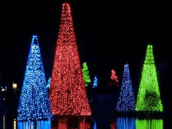 Image result for SeaWorld sneak peek of Christmas Celebration (