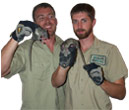Critter control tampa