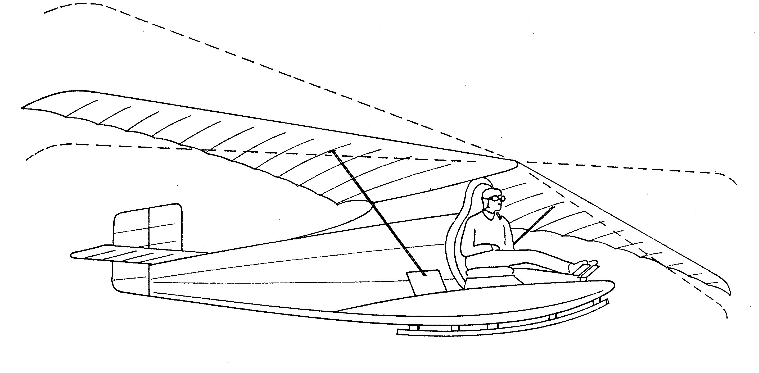 Project Ornithopter