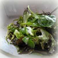 Mindennapi salátánk