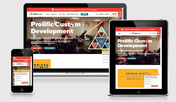 responsive-website01