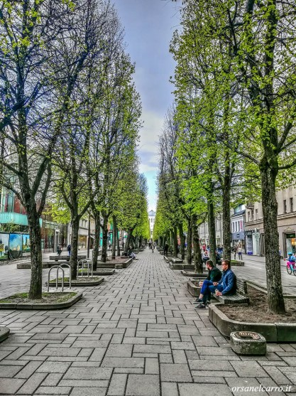 Viale-Libertà-Kaunas
