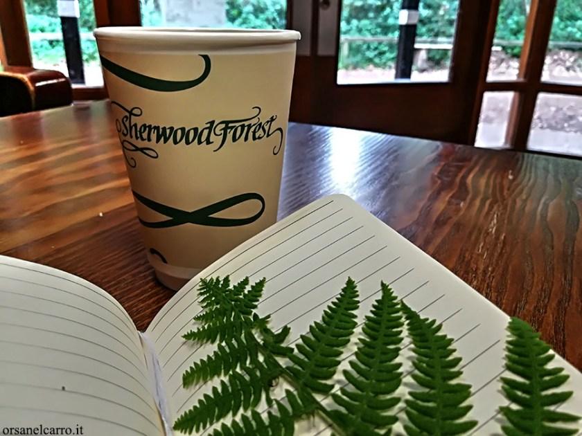Foresta di Sherwood