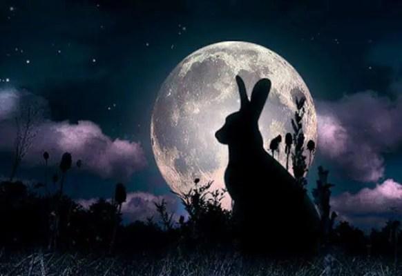 La Luna e la lepre