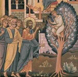 Il Signore e Zaccheo