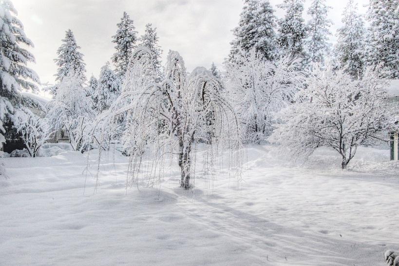 Έκτακτο - Καιρός: Έρχεται νέος φονικός χιονιάςΈκτακτο - Καιρός: Έρχεται νέος φονικός χιονιάς