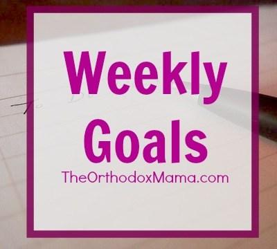 Weekly Goals: Week of December 21