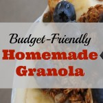 Budget-Friendly Homemade Granola