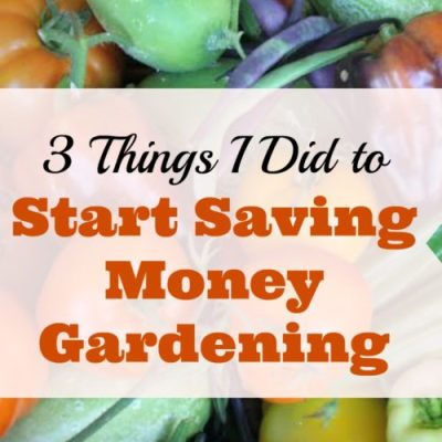 3 Things I Did to Start Saving Money with Gardening
