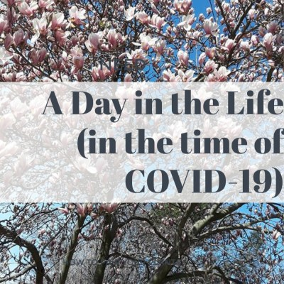 A Day in the Life (in the time of COVID-19)