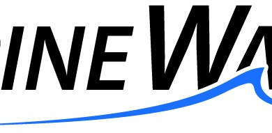 Photo of Spine Wave Announces the Commercial Launch of the Velocity® P Expandable Interbody Device