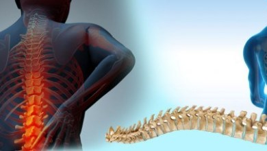 Photo of Global Spine Market to Reach $18 Billion by 2023 According to New Analysis by iData Research