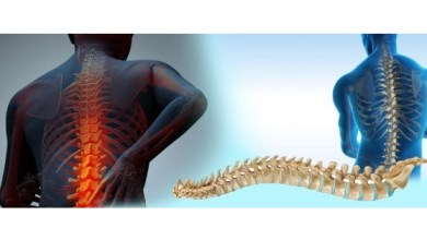 Photo of Spine Biologics Market Share will Increase US $2.5 Billion by 2022