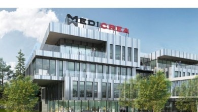 Photo of MEDICREA® Reports 2019 Annual Sales
