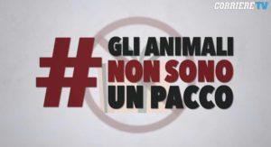 La campagna #GliAnimaliNonSonoUnPacco – Fonte: Corriere della Sera -Animalia
