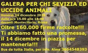 Uniti in nome di Angelo – Fonte: FB-Partito Animalista Europeo