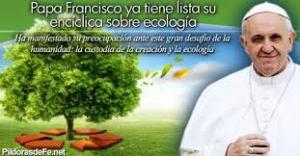 papa-ecologia-a