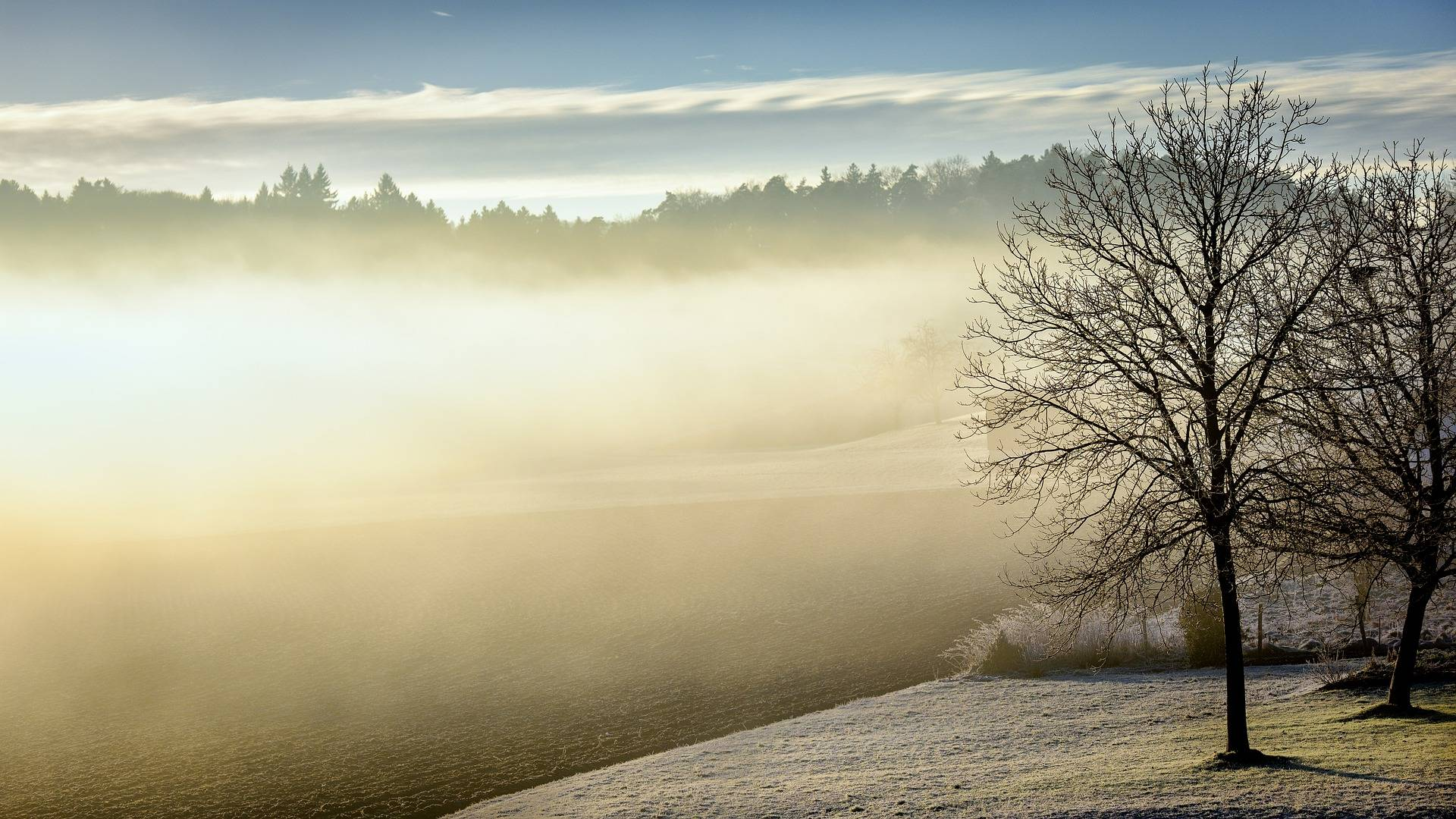 winter-598632_1920