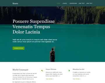 website free template   Rio ferdinands co website free template
