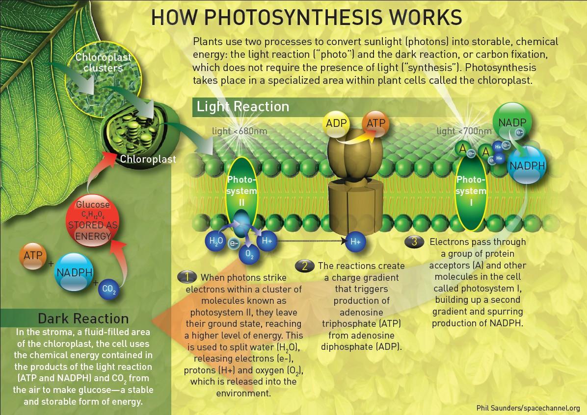 Artificial Photosynthesis Saving Solar Energy For A Rainy
