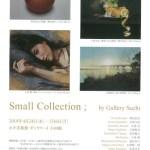 スモールコレクション 2019 by Gallery Suchi