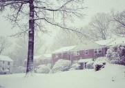 もうすぐ春なのに大雪が降りました…