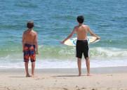 野生のイルカが見れるかも!?ニュージャージーの「ポイント・プレザント・ビーチ」