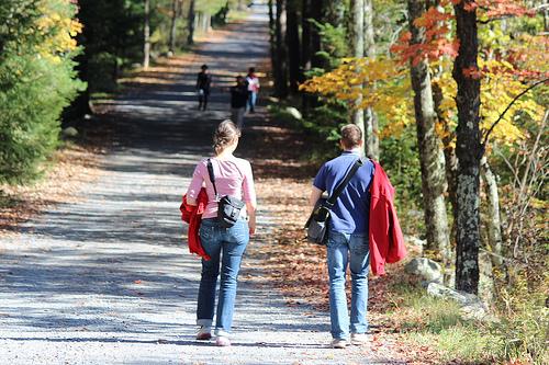 この秋ぜひ歩きたい!ニューヨーク郊外7つのハイキングコース