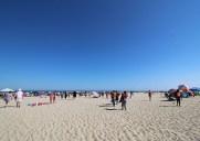 夏はニュージャージの「Point Pleasant Beach」で泳ごう