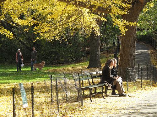今年の秋ニューヨークで絶対にやっておきたい29のこと