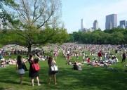 セントラルパークの芝生の広場「シープ・ミドウ」
