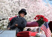 セントラルパークのピルグリムヒルに咲く桜