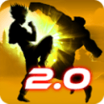 Shadow Fight 2.0