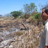 Os incêndios foram combatidos por guardas- parques enviados pelo INEA, que vieram de outras localidades. (Foto: Yan Bonder)