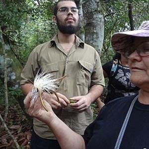 Livro revela a diversidade das plantas da restinga de Jaconé