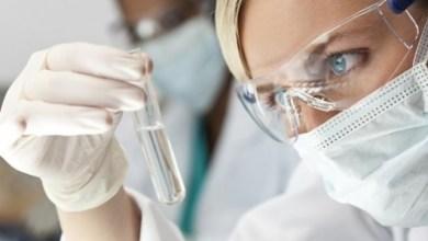 Замразяване на стволови клетки плюсове и минуси