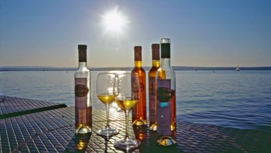 Стил с подбрани десертни вина от Австрия