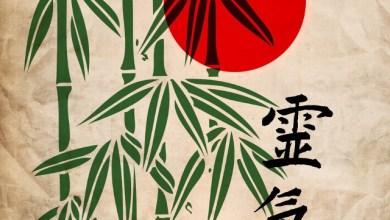 Премахване на стрес с японската техника Джин-Шин-Джицу